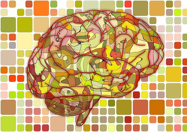 Brain, Biology, Abstract, Cerebrum, Science, Anatomy