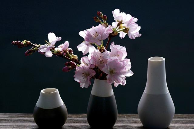 Cherry Blossoms, Branch, Pink, Spring, Cherry Blossom