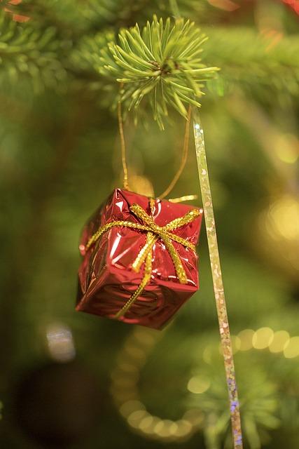 Tree, Branch, Christmas, Decoration, Xmas, Winter