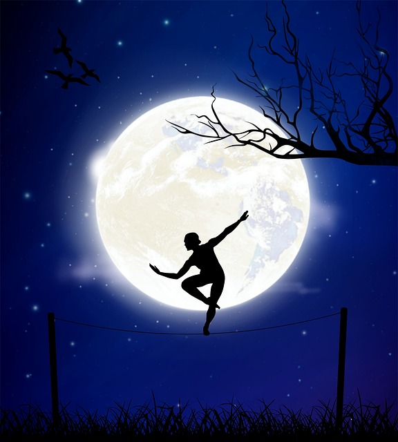 Moon, Night, Balance, Tightrope Walker, Branches, Birds