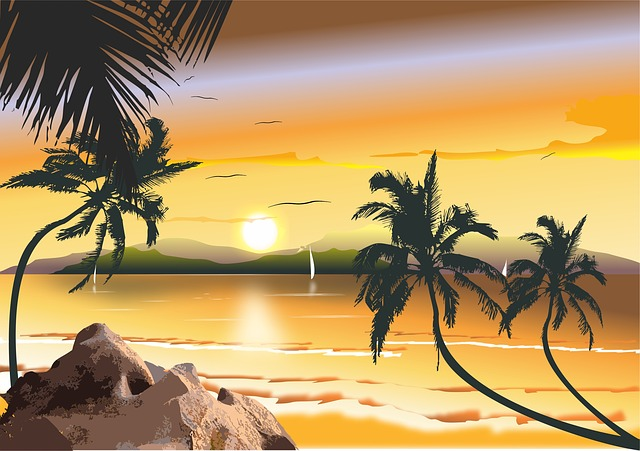 Brazilian Beach, Beach Northeast, Brazil, Tropical