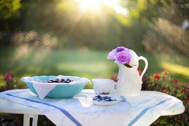 Blueberry, Breakfast, Sunlight, Food, Dessert, Snack