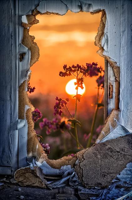 Door, Breakthrough, Door Sunburst, Flowers