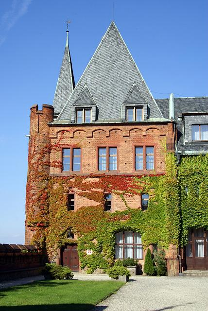 Palace, Castle, Bricks, Brick Wall, Brick House, Hradec