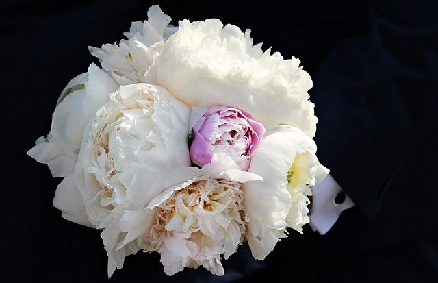 Bridal Bouquet, Bouquet, Congratulations, Wedding