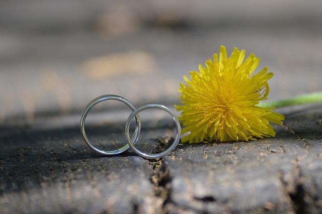 Wedding, Ring, Wedding Ring, Plant, Bride, Bouquet