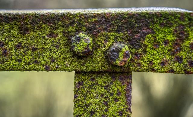 Railing, Bridge, Rusty, Old Broken, Moss, Grass, Green