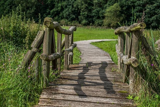 Bridge, Wood, Meadow, Wooden Bridge, Moor, Boardwalk