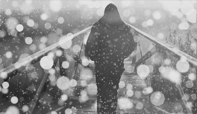Person, Bridge, Snow, Snowfall, Winter, Bokeh, Web