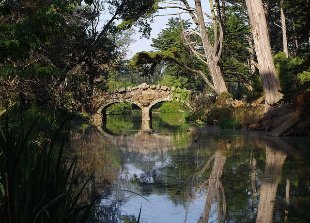 Bridge, Stone, Water, Nature, River, Masonry
