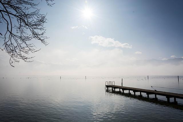 Lake, Bridge, Web, Wood, Railing, Post, Wooden Posts
