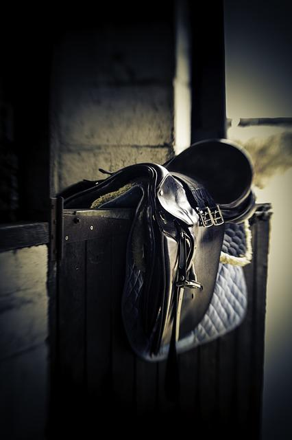 Saddle, Stable Door, Equestrian, Horse, Bridle, Riding
