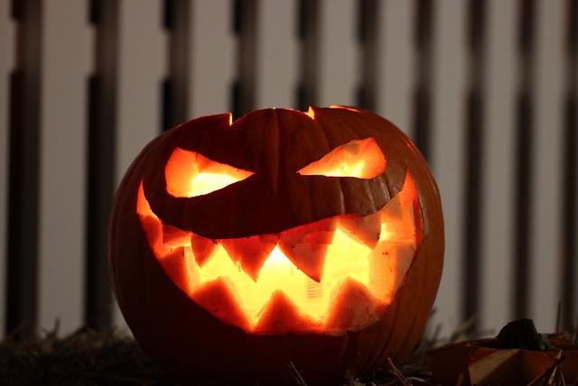 Pumpkin, Halloween, Frankenweenie, Bright, Hollow Out