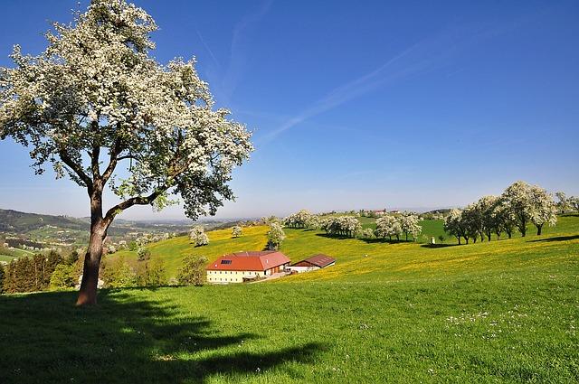 Nature, Landscape, Blue Sky, Bright