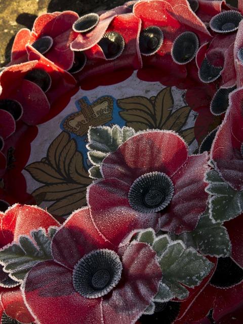 Wreath, Poppy, War, Remembrance, Frost, British Legion