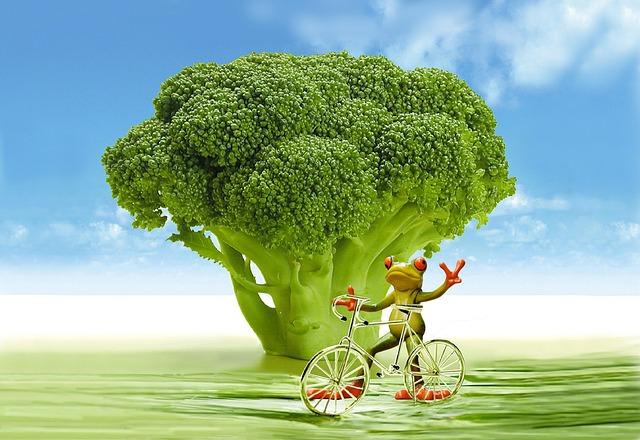 Appetite, Broccoli, Frog, Bike, Funny, Cute, Calories