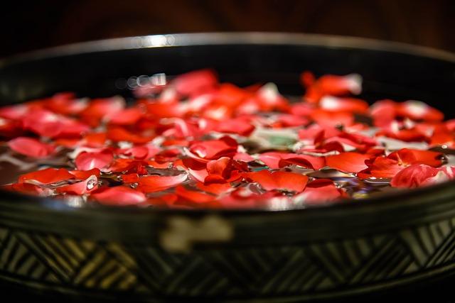 Rose, Petal, Bronze Vessels