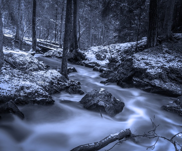 Forest, Brook, Winter, Swedish Nature, Creek, Hdr