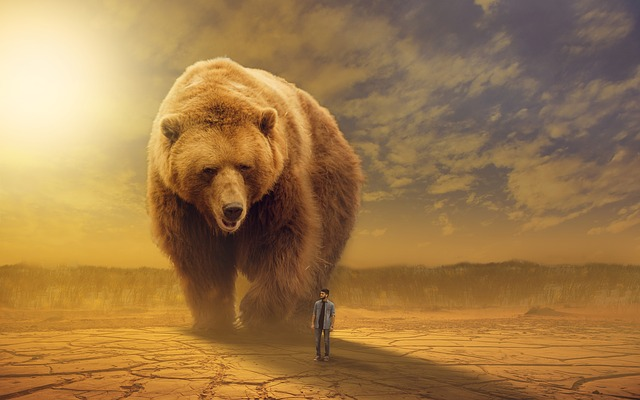 Big, Bear, Desert, Brown Desert