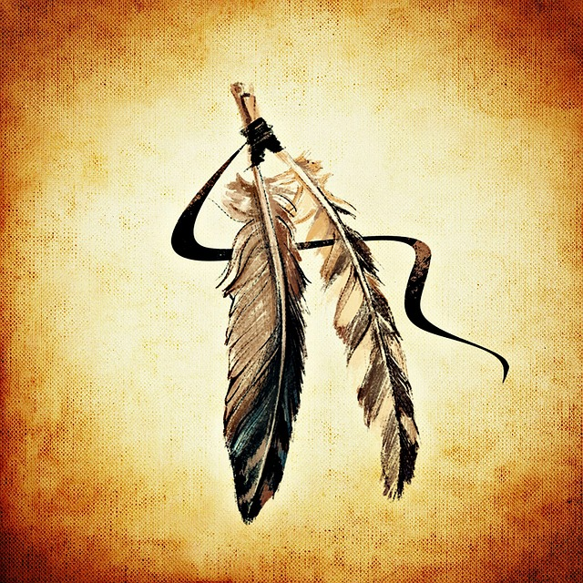 Feather, Indian, Brown