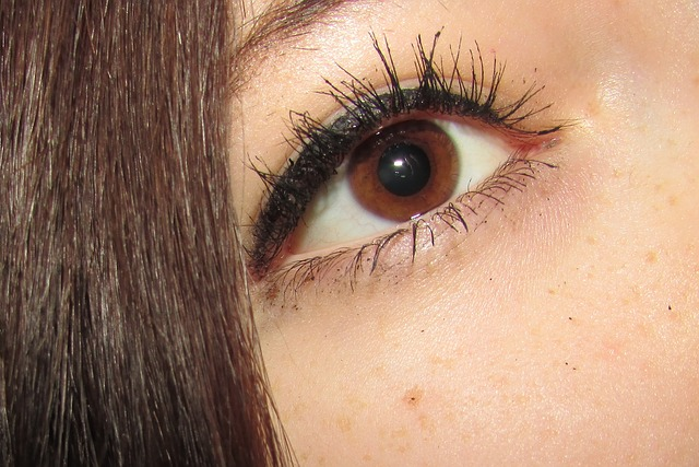 Eye, Brown, Makeup, Mascara, Girl