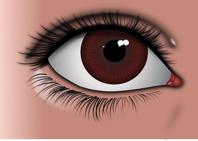 Eye, Brown Eye, Brown, Face, Girl, Iris, Lashes, Women