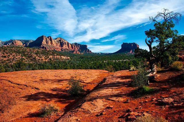 Arizona, Canyon, Landscape, Scenic, Desert, Brush