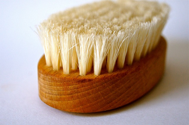 Brush, Bad, Clean, Spring, Wood, Nature, Wellness