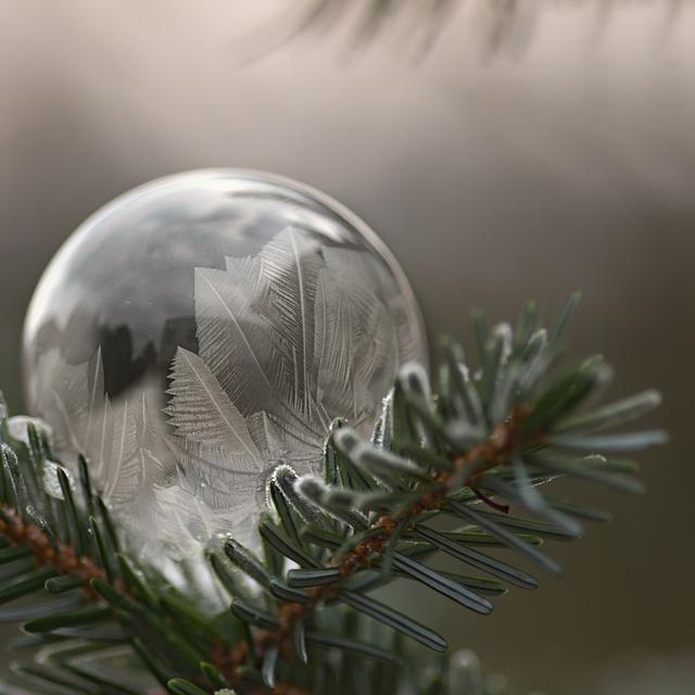 Bubble, Frost, Winter, Bubble Blower