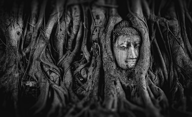Buddha, Thailand, Architecture, The Statue Of, Travel