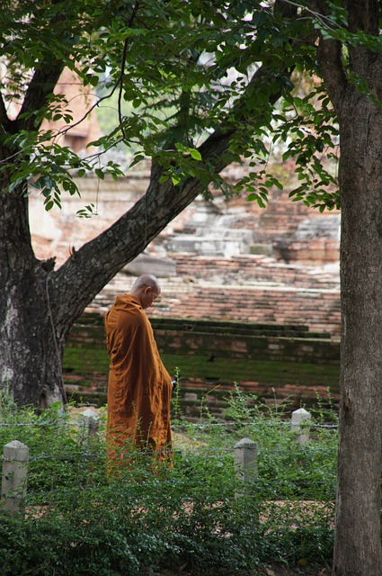 Monk, Munk, Thailand, Buddhism, Orange, Monastery