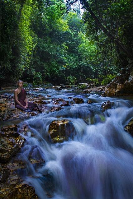 Theravada Monk, Meditate, Meditation, Buddhist