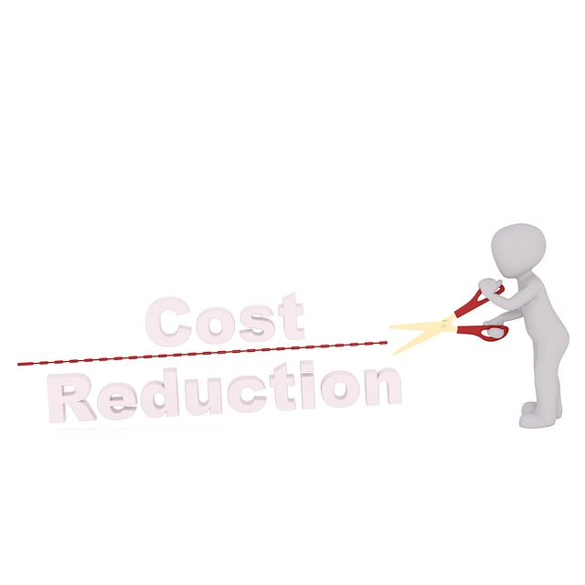 Cost, Reduction, Save, Austerity Measures, Budget