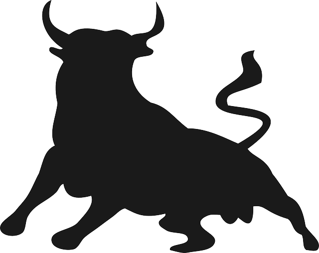 Bull, Buffalo, Animal, Mammal, Horns, Wild, Power