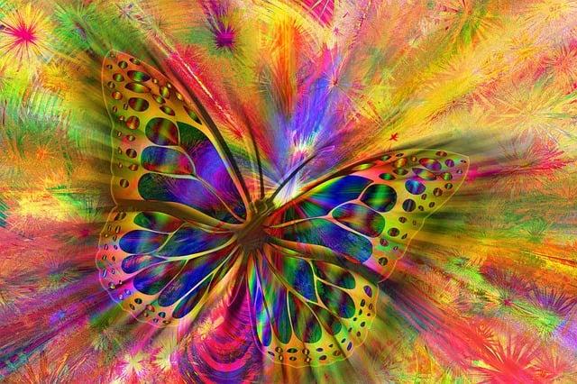 Arrangement, Butterfly, Aesthetics, Aesthetic, Building
