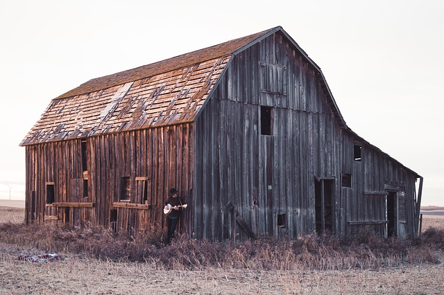 Abandoned, Architecture, Barn, Building, Cabin, Decay
