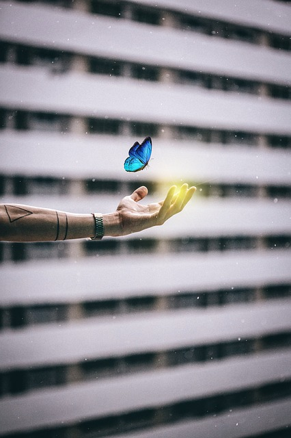 Butterfly, Hand, Building, Desktop, Pattern, Abstract