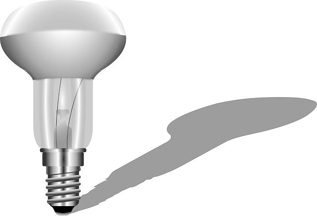 Bulb, Light, Lamp, Electric, Electric Bulb, Electricity