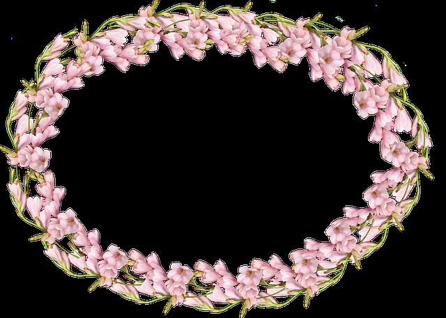 Frame, Pink, Bulb, Flower