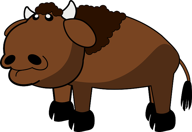 Bison, Animal, Buffalo, Farm, Mammal, Cow, Bull