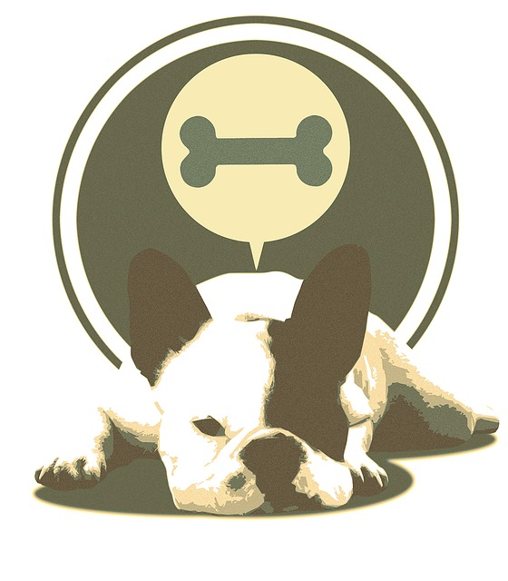 Bulldog, Lying, Dog, Dog Lying, Laziness