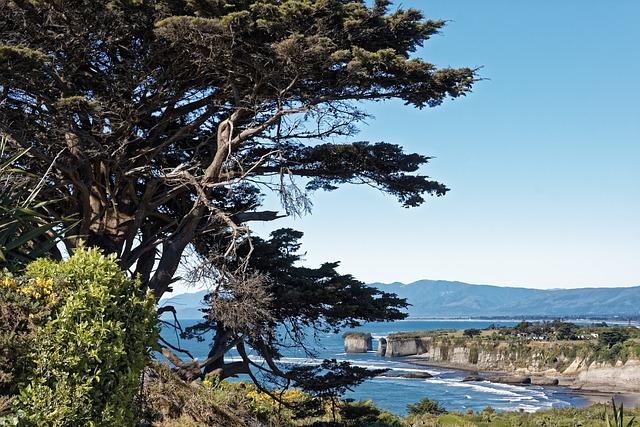 New Zealand, Buller Bay, Cape Foul Wind, Landscape