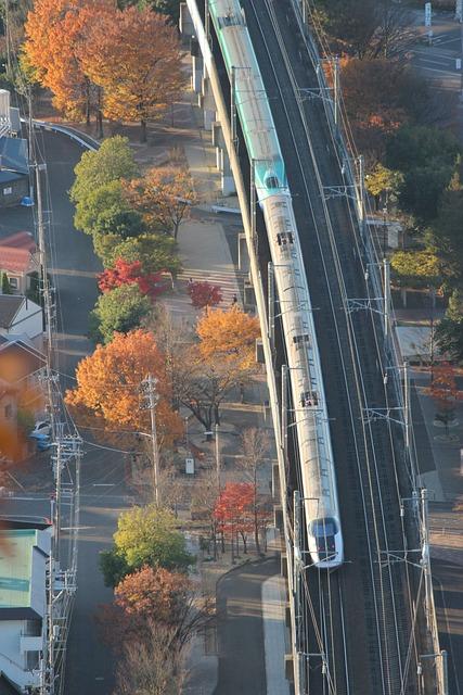Fukushima, Bullet Train, Autumn, Autumnal Leaves, 烏ヶ崎