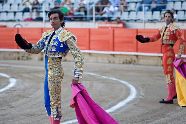 Bullfight, Bullfighting, Spanish, Bullfighter, Pride