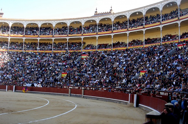 Bullring, Bullfighters, Arena, Bullfighting