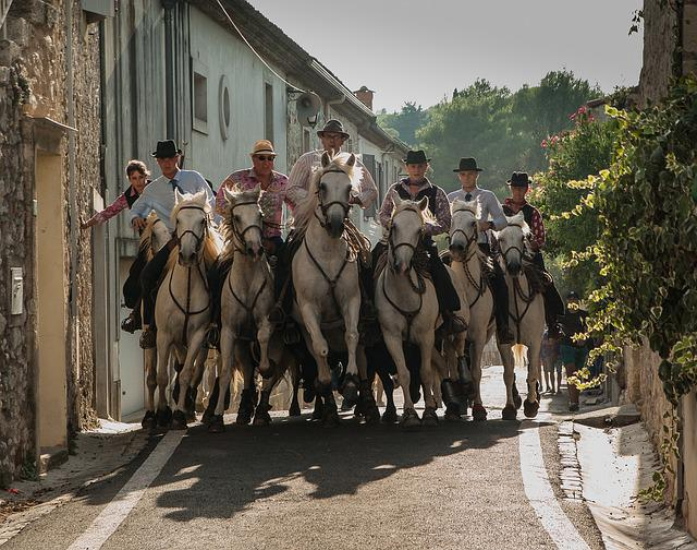 Camargue, Feria, Camargue Race, Horses, Bulls, Riders