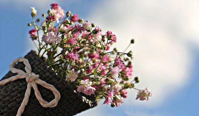 Flowers, Gypsophila, Small Flowers, Bunch