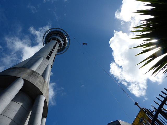 Sky Tower, Auckland, New Zealand, Bungee, Jump