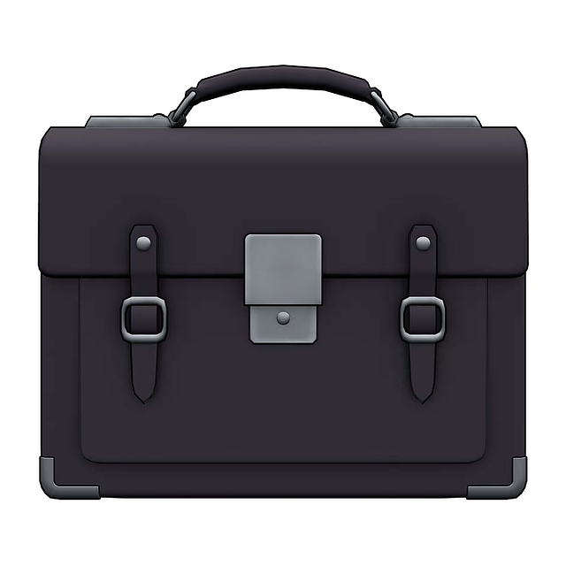 Briefcase, Handbag, Bag, Case, Luggage, Business