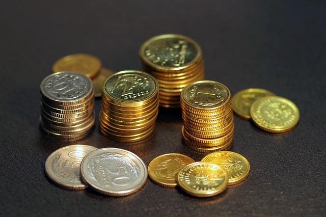 Money, Coins, Poland, Business, Finance, Buck, Savings